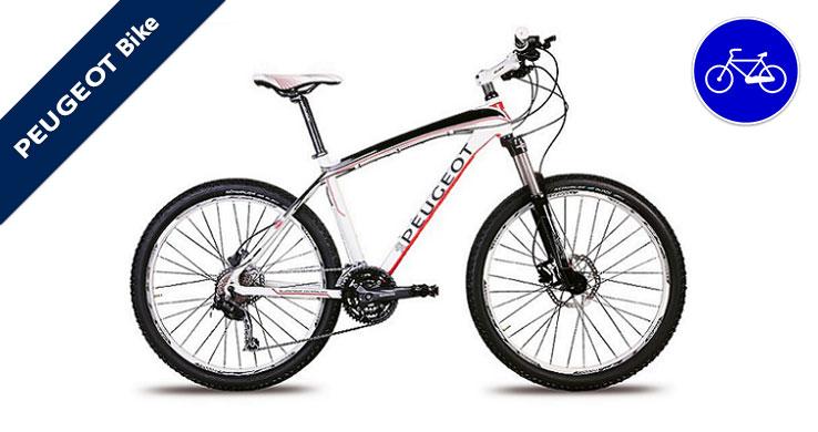 professione auto peugeot roma bicicletta mountain bike