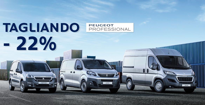 Professione Auto Peugeot Roma sconto tagliando peugeot professional